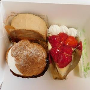 『お試しのケーキ!?』