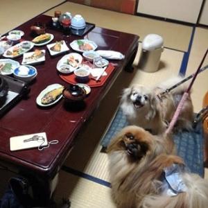 その2、湯田中温泉と善光寺に行ってきた♪
