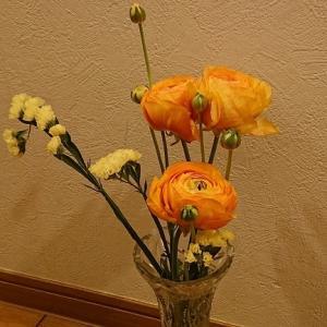 ビタミン色の花に元気をもらおう!