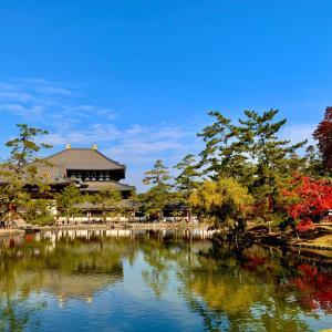 東大寺周辺ぶらり紅葉狩り♪