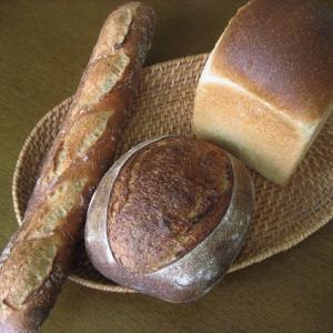 最近のパン