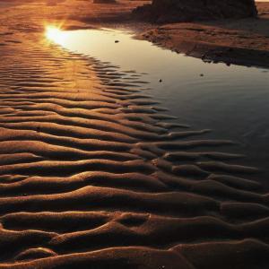 潮溜まりの跡