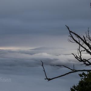 2時起床 屈斜路湖の雲海。