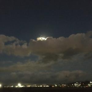 月を見上げて