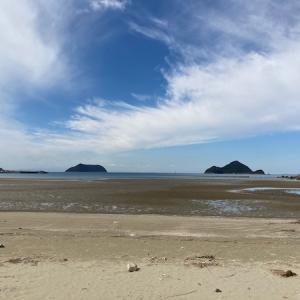 広いビーチでお散歩!