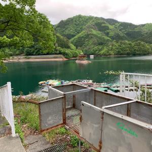 生野銀山湖 近況など 12たび