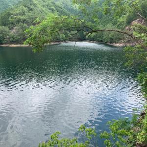 生野銀山湖 水位など 14たび