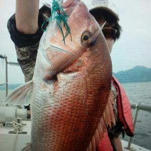 鯛ラバ 舞鶴漁港