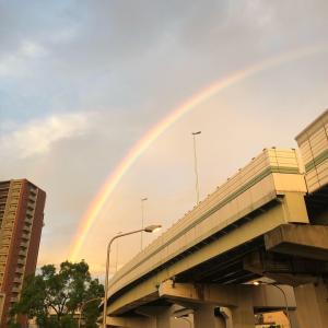 綺麗な虹が見えてしあわせな気持ちになりました♪