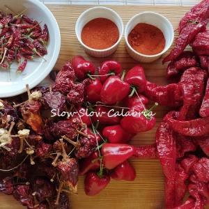 3回目Zoomレッスン♪カラブリアの赤い食材勢ぞろい!