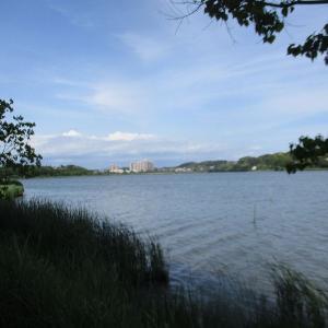 風薫る5月、ロケーションのよい中、屋外での瞑想会を開催:佐鳴湖公園