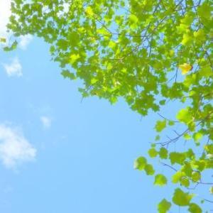 5月の仏教勉強会・瞑想練習会~5月26日(日) 13:00~/福祉交流センター