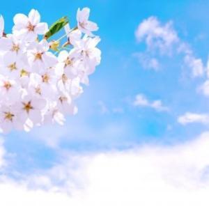【2019年まとめ】浜松 仏教勉強会・わかりやすいお釈迦さまの話し