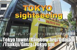 ハトバスで東京観光!
