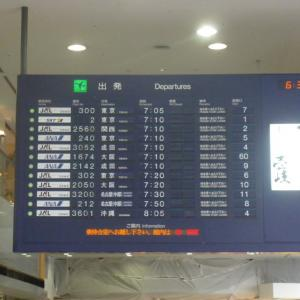 200807全日空搭乗記「ANA240便 福岡-東京羽田」古いプレミアムクラス
