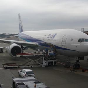 200812全日空搭乗記「NH919便 NRT-PVG」