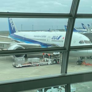 202104全日空搭乗記「ANA067便 東京羽田–札幌新千歳」