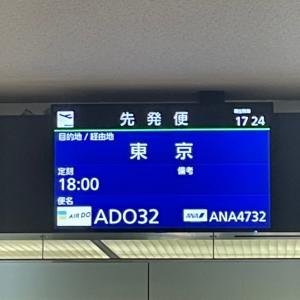 202104エアドゥ搭乗記「ADO32便 札幌新千歳–東京羽田」コードシェアANA4732便