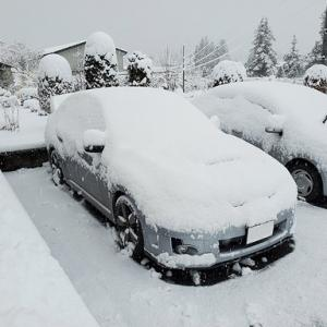 暖冬の大雪