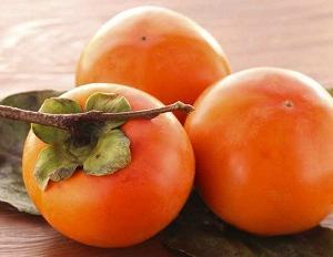 ブログネタ:柿、好き?苦手? 参加中