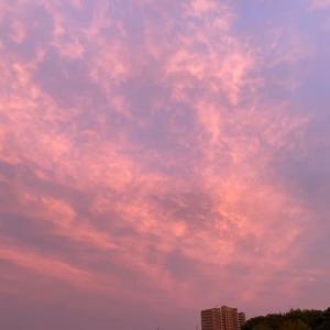 空がピンク