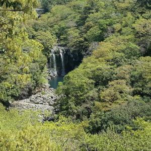 済州島 神の池 天帝淵瀑布行きました少しだけ