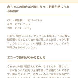 お留守番2019.9.28