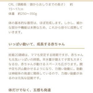 出血治まる~♪2019.10.8