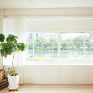 心もスッキリ!1ヶ月片づけ(2)「カーテンを洗う」|緊急事態宣言1ヶ月「家」時間充実プロジェクト