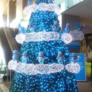 2019大阪クリスマスツリー&イルミネーション♪