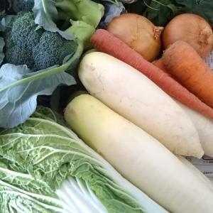 母手作り無農薬野菜とまとめておうちごはんと夫くんネタ♪