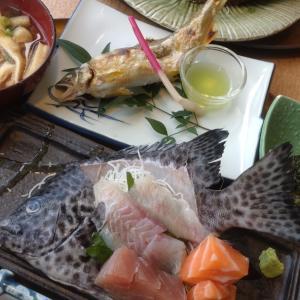 喫茶とお食事里でコスパ最高!びっくりお魚ランチ♪