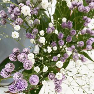 本日のお花とSNS