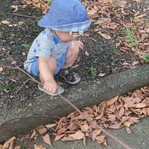 三男 * 1歳5ヶ月
