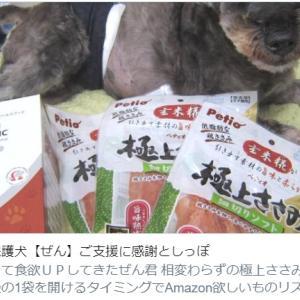 [再]保護犬【ぜん】ご支援に感謝としっぽ
