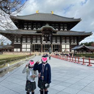 奈良旅行☆観光とグルメの旅♪