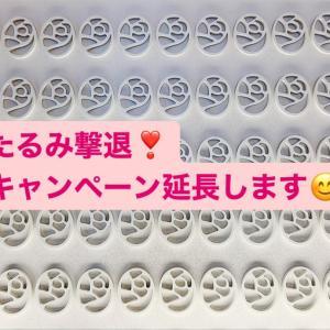 8月キャンペーン☆第1弾♪