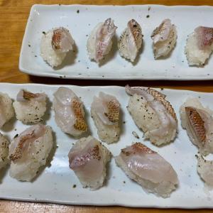 お休み:マダイ料理、太刀魚テンヤ