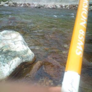 馬瀬川のアユ釣り  過去ブログ2