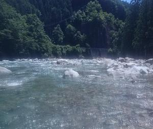 秒殺  馬瀬川上流 鮎釣り