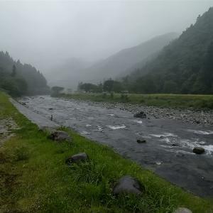 昨夜から 雨が・・【馬瀬川上流鮎釣り】