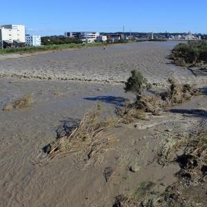 台風が過ぎ去った多摩川の様子