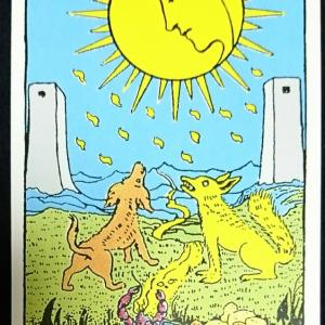 【今日のカード】2020年1月28日