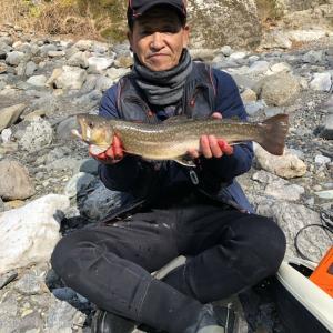 渓流釣り 釣果情報🎵