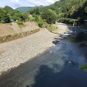 今朝の神流川