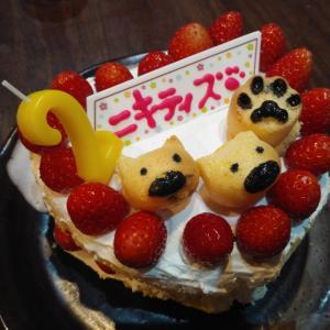 ニキちゃん、2歳になりました!!