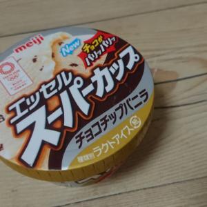 エッセルスーパーカップチョコチップバニラ (明治)