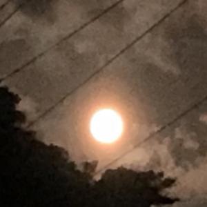 今夜の満月は・・・・