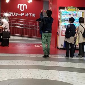 9月21日(土)横浜・9月26日(木)代官山 ペットちゃんとお話&タロットします!
