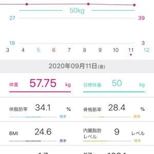 耳つぼダイエット開始した61歳Yさんの経過(25)